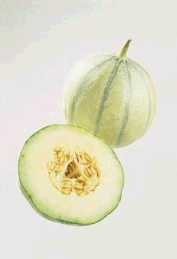 Prøv også Charantais melon.