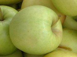 eple næringsinnhold