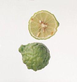 Prøv også Kaffirlime blad, limeblad.
