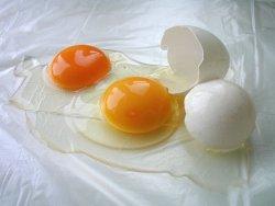 Bilde av Eggeplomme, rå.