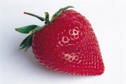 Jordbær. Fotograf: Knut Pettersen