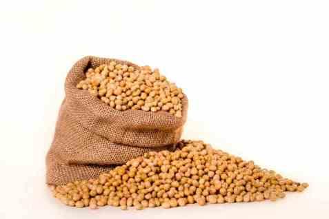 Bilde av Edamamebønner, soyabønner, fryst.