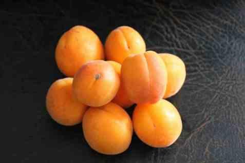 Bilde av Aprikos nektar/juice.