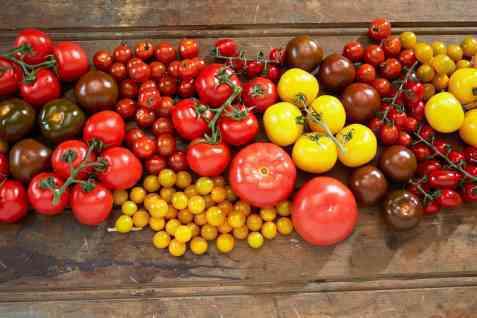 Tomat er gr�nnsaken med h�yeste omsetningsverdi i Norge