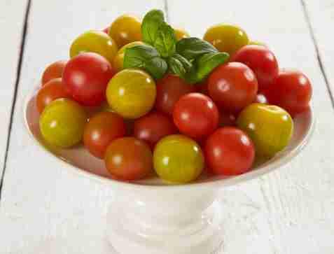 Tomaten - den røde rubin