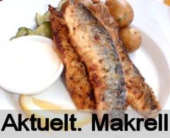 Aktuelt n�: Makrell.