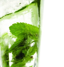 Hendrick's mint Collins oppskrift.
