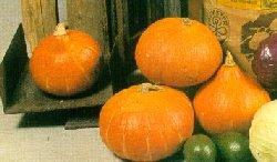Prøv også Frityrstekt hokkaido(Beignet).