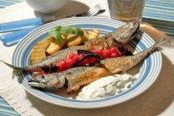 Prøv også Stekt makrell med urtekesam, krydderkokt rips og grillet potetsalat.