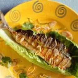 Prøv også Makrell i salat med sitrongress og koriander.