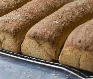 Brød i langpanne oppskrift.