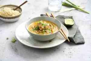 Pr�v ogs� Thaigryte med strimlet svinekj�tt.