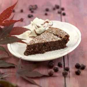 Prøv også Sjokoladekake med solbær.
