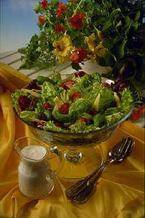 Bilde av Jordb�r- og ostesalat med yoghurtdressing.