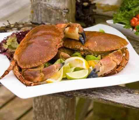 Krabbe naturell oppskrift.