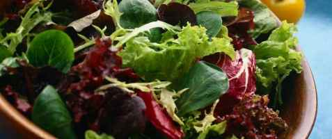 Mesclum salat oppskrift.