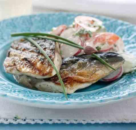 Grillet makrell med sommersalat oppskrift.