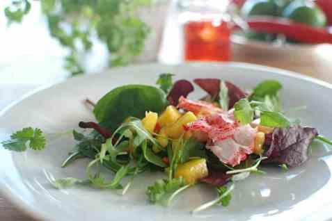 LobNobs og mango salat oppskrift.