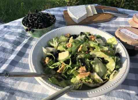 Salat med solbær, brie og valnøtter oppskrift.